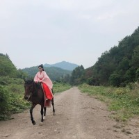 馬に上手く乗るソンソ