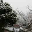 雪❄️です😃〰️