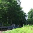 天然クーラーの大郷戸ダム公園で散歩