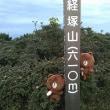 くるっと経塚山一周 日出町へアサギマダラとミヤマキリシマ??