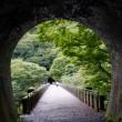 めがね橋2017秋