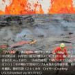 アングル:ハワイ火山噴火、科学者が自然に挑む「決死の調査」・・CO2は関係ない!