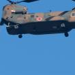 指揮官降下〜平成31年度 陸上自衛隊第一空挺団 降下始め