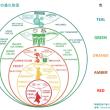 組織の進化を色で表現