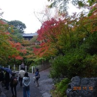 そうだ京都に行こう!
