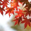 山岳点景:赤秋予祝