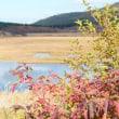 秋の八ヶ岳西麓から霧ヶ峰周遊は・・・八島湿原で・・・オワリ