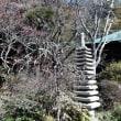 「浄光明寺」泉が谷に!