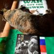 <社説>新横田基地騒音判決 基本的人権に背を向けた(琉球新報)