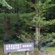 八ヶ岳高原ロッジ