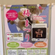 荒子公園梅まつり2018年3月3日4日(よしだ麺)