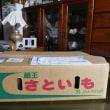 蔵王産のさといもで「さといも田楽」。今度は、秋田県横手風「芋の子汁」で