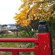 紅葉と龍馬祭り