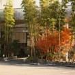 野坂屋旅館の玄関