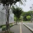 Walking around Akita station