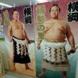 大相撲春巡業取手場所