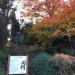 根香寺の紅葉   11月27日
