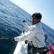 3月24日 サメ祭り…