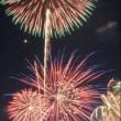 なにわ淀川花火大会 美しくて素晴らしかったです!