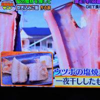 1/15 ウツボの干物 食べてみたい