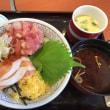 彩りサーモン丼