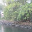 堀川の護岸工事