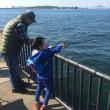 若洲海浜公園で海釣り