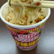 本日のランチ(カップ麺シリーズ4)