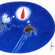 朝一番クモの巣破ってゴールかな ゴンベ