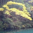 白丸湖でカヤック遊びするー1(湖面に浮かぶ)