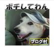 世界チャンピオン「皇朝」自慢の『お歳暮ギフトセット』モニター募集!