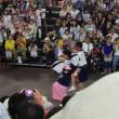 阿波踊りとよさこい祭り