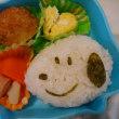 スヌーピーお弁当