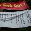 沖縄・7月のゆがふ 3日目の写真43枚