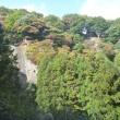 凡さんの山歩き  秋の物語