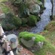 兼六園 橋巡り ⑥その他名前のない橋-1