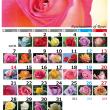 1月カレンダー,バラの花で作ってみました。