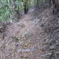 h30.10.7   アップダウンの連続でお坊山へ。景徳院に下山したが続きがあった (7日その2)
