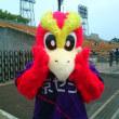 5/26 第16節 横浜FC戦 (京都・西京極競技場)