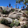 瑞牆山登山(1) (標高 2,230m 山梨県北杜市)【登山口~山頂】