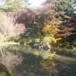 晩秋?、初冬の兼六公園、金沢城公園