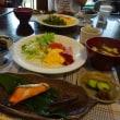 煮物二種のお弁当と、仲間と奥多摩ハイキング
