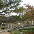 榛名湖の紅葉2017