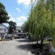倉敷の旅館で和食ランチ