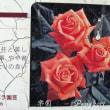 薔薇の園  * 2017 *  Vol.102 * 楽園 *