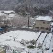 季節外れの雪となりました。