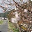 田舎を散策天気よくて最高(10/9)