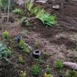 庭をつぶして駐車場作り、