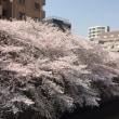 春満喫大人の遠足