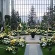 奇跡の星の植物館へ行ってきました!